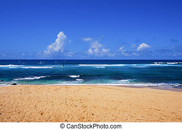 tropical tengerpart, hawaii