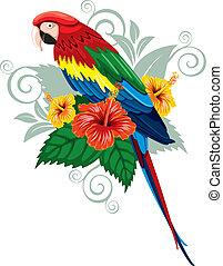 tropical virág, papagáj