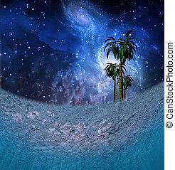 tropikus, éjszaka táj, víz alatti