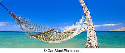 tropikus, függőágy, hawaii
