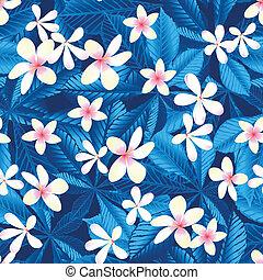 tropikus, frangipani, virágos, seamless, motívum