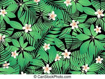 tropikus, frangipani, zöld, menstruáció, zöld