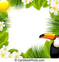 tropikus, keret, alapismeretek, zöld