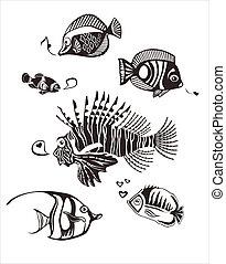 tropikus, monochrom, halászott