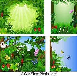 tropikus, nagy, vektor, erdő, állhatatos, keret, gyönyörű, ábra, ikon