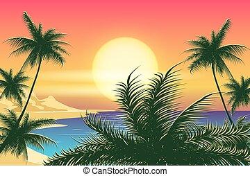 tropikus, napnyugta, táj