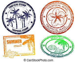 tropikus, nyár, topog