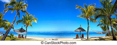 tropikus, panoráma, tengerpart