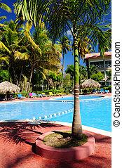 tropikus, segélyforrás szálloda, pocsolya, úszás