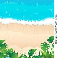 tropikus, tengerpart, óceán