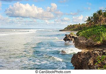 tropikus, tengerpart