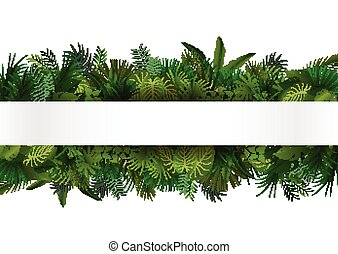 tropikus, tervezés, virágos, foliage.
