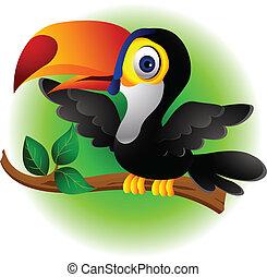 tukán, karikatúra, madár, átnyújtás