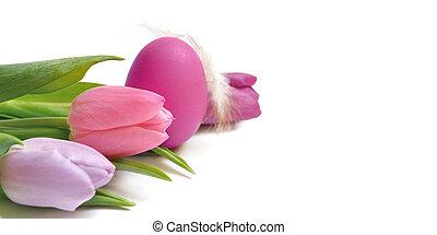 tulipánok, easter ikra