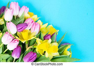 tulipánok, menstruáció, nárciszok