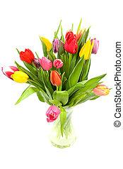 tulipánok, színes, holland