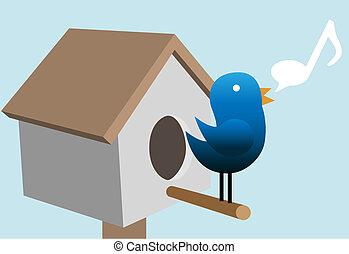 tweets, épület, csipogni, tweety, madár