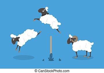 ugrás, elszigetelt, sheep.