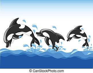 ugrás, karikatúra, delfinek