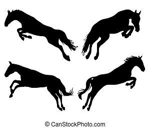 ugrás, lovak