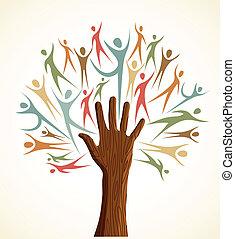 változatosság, állhatatos, fa, emberi kezezés
