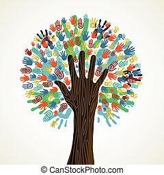 változatosság, fa, elszigetelt, kézbesít