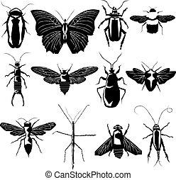 változatosság, vektor, árnykép, rovar
