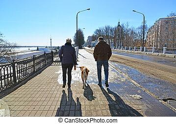 város, gyalogló, nő, kutya, ember
