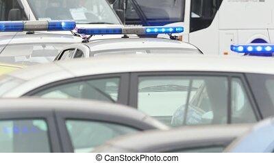 város, rendőrség, autók, fellobbant, -, három, állati tüdő, út