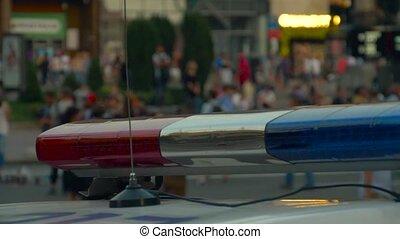város, villanás, rendőrség, utca., állati tüdő