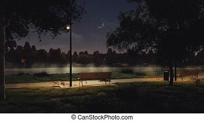városi park, bírói szék, sötét, ősz, 4k, éjszaka, üres