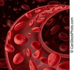 vér, keringés, cellák