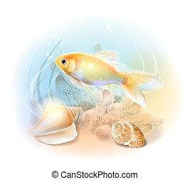víz alatti, aranyhal, fish., sea., ábra, tropikus, akvárium, world.