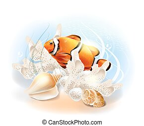 víz alatti, fish., ábra, tropikus, clownfish, sea., world., akvárium