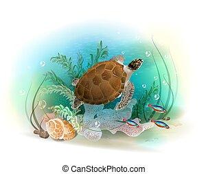 víz alatti, tengeri teknős, tenger, ocean., úszkál, fish., ábra, tropikus, akvárium, world.