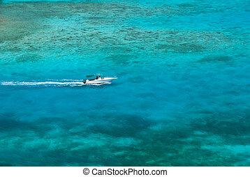 víz, caribbean