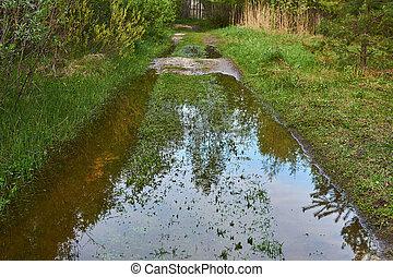 víz, folyó, alatt, floodplain, ár, út, beragad, közben, piszok