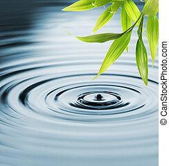 víz, friss, bambusz, felett, zöld