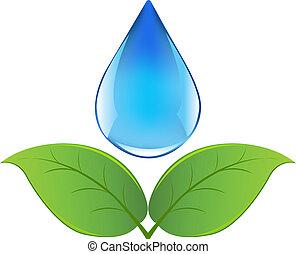 víz, hajtás, csepp