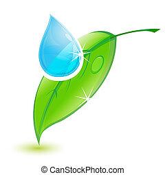 víz letesz, levél növényen