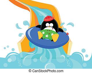 víz megcsúszik, pingvin
