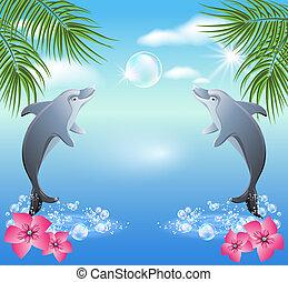 víz, szökell, delfinek