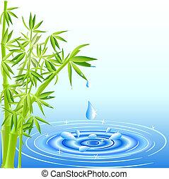 víz, zöld, esés, bambusz, savanyúcukorka