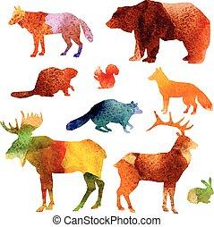 vízfestmény, állhatatos, állatok