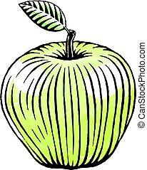 vízfestmény, skicc, zöld alma, tinta