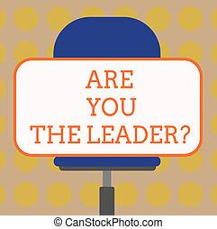 vízszintesen, elfordul, fogalom, szó, ügy, ülés, leaderquestion., szöveg, böllér, írás, alakít, vezetés, chair., bemutat, tiszta, bevétel, ön, derékszögű, társaság, törődik