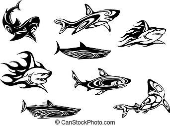 vad, tetovál, cápa, ikonok