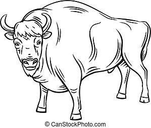 vagy, aurochs, bölény