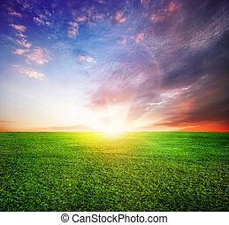 vagy, napnyugta, napkelte, zöld terep, gyönyörű