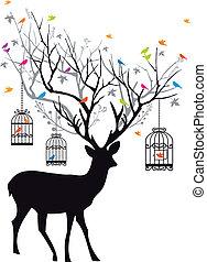 vect, őz, madarak, birdcages